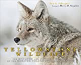 Yellowstone Wildlife: Ecology and Natural History of the Greater Yellowstone Ecosystem by Paul A. Johnsgard front cover