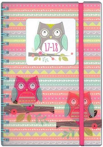 tallon-a5-day-per-page-owls-academic-mid-year-student-diary-2017-2018