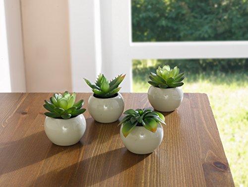 Mini-Art-Set-of-4-House-Plant-in-Pot