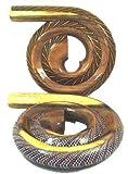 Salon Professionnel Sculpté Mangowood Hand Made and Peint Voyage Didgeridoo (Devian)