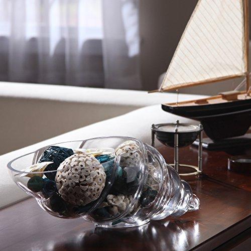 HOSLEY Glas Shell Vase–20,3cm lang. Ideal für Spa, Aromatherapie. Floral Einstellungen. DIY Craft Projekte, Votivkerze Gärten - 2