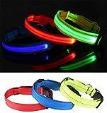 Wandrola LED Hundehalsband mit Reflektierendem Gurt - USB wiederaufladbar mit wasserfestem Blinklicht - für Sicherheit bei Nacht