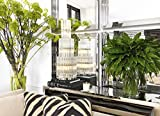Casa-Padrino-Designer-Luxury-Wall-Mirror-100-x-H-100-cm-Luxury-Hotel-Collection
