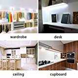 LEDMO-Tiras-de-LED-Tiras-de-LED-Blanco-SMD5630-300led-25Lmled-5-metros-de-largo-el-doble-de-brillo-tiras-de-led-interiorde-alto-rendimiento-de-color-CRI80-proteger-los-ojos-hogar-iluminacin-ambiental-