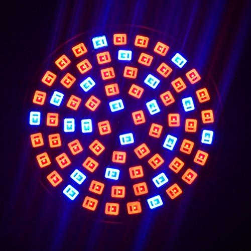 Bweele Lampadina a LED per Piante a Spettro Completo LED Grow Light Lampada per Piante a Crescita vegetale Crescita Lampade per Piante Crescita Daylight Lampada per Piante da Interno