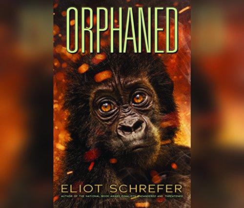 Orphaned (Ape Quartet, Band 4)