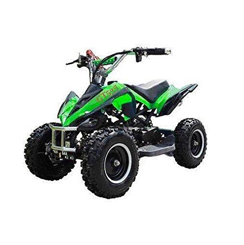 49ccm Quad Miniquad Kinder ATV 6 Zoll 2 Takt Pocketquad Kinderquad Grün RV-Racing 49cc