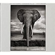 Nick Brandt: On This Earth, A Shadow Falls by Nick Brandt (2014-09-08)