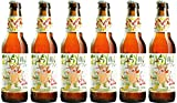 Flying Dog Easy IPA - Bière américaine - 35,5cl