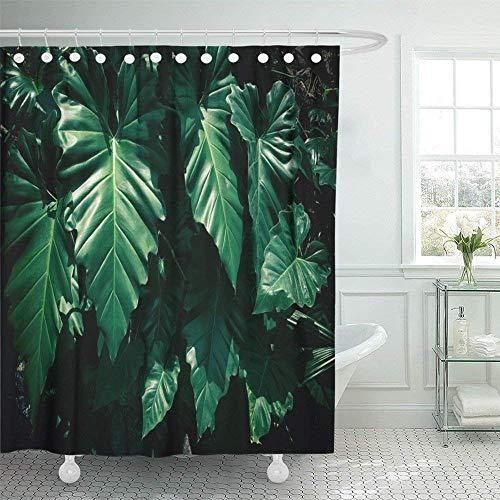änge/Badvorhänge, Shower Curtain Print Plant Tropical Leaf Stripes Dark Green Foliage Big Abstract Area Artificial Bathroom ()