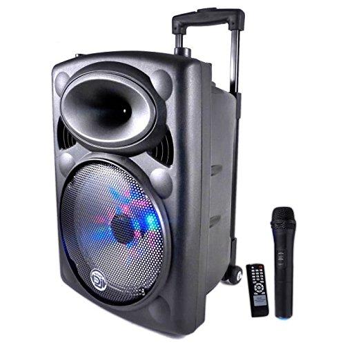 Cassa audio picky 10 120 watt
