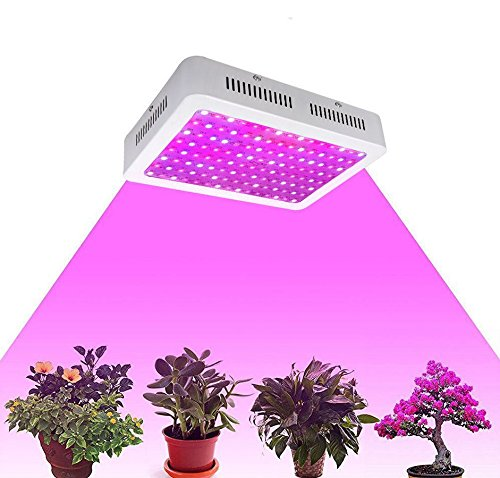 Vander Grow Light LED Pflanzenlichter Full Spectrum Pflanzenlampe Hydroponics Indoor Plants and Flower (1000W)