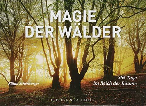 Tischaufsteller Magie der Wälder: 365 Tage im Reich der Bäume (Im Tag Ein Wald)