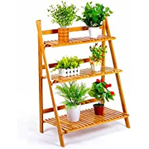 Estanterias decorativas plantas exterior for Plantas decorativas amazon