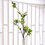 A diramazione singola simulazione Fiori artificiali, Living room decoration Flower alberi da frutto Bouquet decorazione(1pz.), lunghezza 112cm,Lunghezza di frutta bianca