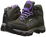 Hi-Tec Women s Skamania Waterproof Hiking Boot Grey/Viola 10 C/D US