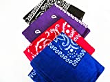 Four Pack Paisley Design Bandanas black purple blue red. fast post by Unknown