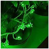 LED Lichterkette, Mr.Twinklelight 120er LED Draht Lichterkette für Garten, Party, Weihnacht und Haus Dekoration. Grün