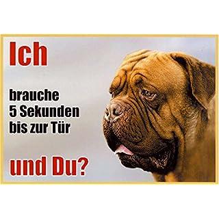 AkaPit Warnschild Labrador Dunkelbraun 043 ca. 21 x 15 cm laminiert wasserabweisend Motiv : Ich Brauche 5 Sekunden bis zur Tür und Du ? Verwendbar im Innen und Außenbereich