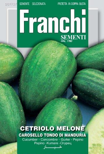 Franchi Concombre rond de Manduria