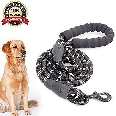 5 FT Starke Hundeleine mit Bequemen Gepolsterten Griff, Starke Reflexnähte der Trainingsleine für Sicherheit Nachts, eignet für Alle Größe Hunde