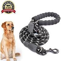 Anicoll 5 FT Starke Hundeleine mit Bequemen Gepolsterten Griff, Starke Reflexnähte der Trainingsleine für SicherheitNachts, eignet für Alle Größe Hunde