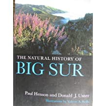 Amazon.it  Big - History  Libri fefc73eeab8f
