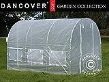Dancover Foliengewächshaus 2x3x2m, 6m², Durchsichtig