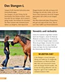 Bodenarbeit mit Pferden: Abwechslungsreiche Übungen, die Spaß machen - 9