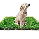 Synthetischer Kunstrasen Teppich für den Innen und Außenbereich, Florhöhe 35 mm, ideal als Teppich für Hunde, Garten und Fußmatte, gummierte Unterseite mit Drainagelöchern (3.28ft*4.92ft(1M*1.5M))