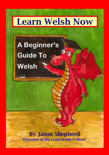 Learn Welsh Now: A Beginner's Guide to Welsh (English Edition)