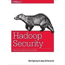 Hadoop Security: Protecting Your Big Data Platform