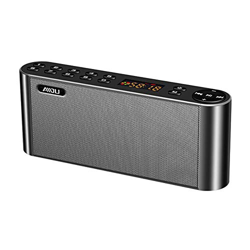 ZYWTZ Bluetooth Speaker Tragbar FM-Radio,Support TF Card/U Disk/WAV Playback,Compatible with A Variety of Bluetooth Devices,Black