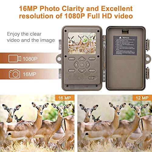 Zoom IMG-3 fotocamera da caccia visione notturna