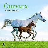 Chevaux calendrier 2017