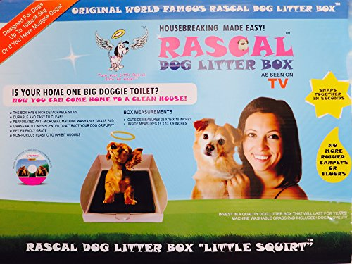 DOG LITTER BOX LITTLE SQUIRT BY THE RASCAL DOG LITTER BOX COMPANY. AS SEEN ON DRAGON'S DEN ....... 8
