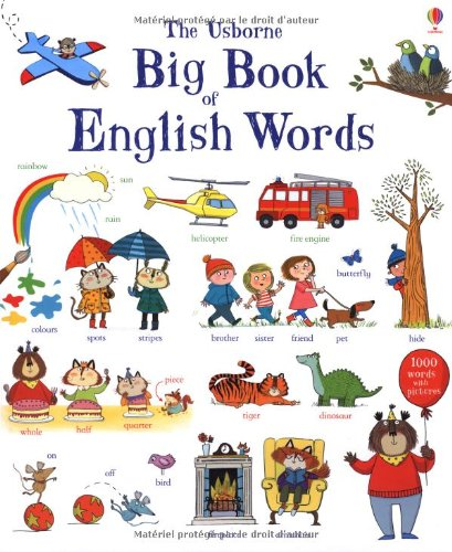 Big book of english words (Big Word Books)