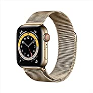 AppleWatch Series 6 (GPS + Cellular, 40mm) - Gold Stainless Steel Case with Gold Milanese Loop