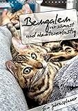 Bengalen - verschmust und abenteuerlustig (Wandkalender 2019 DIN A4 hoch): Ein Jahresplaner mit zwei abenteuerlustigen und verschmusten Bengalen (Planer, 14 Seiten ) (CALVENDO Tiere)