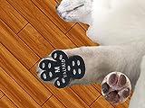VALFRID Protecteur de patte de chien robuste anti-dérapant 24 pièces, jetable auto-adhésif résistant chien chaussures bottillons chaussettes M