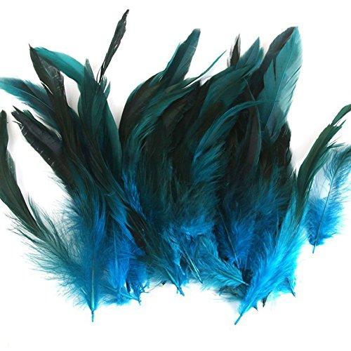 Hosaire 50pcs Nähen Handwerk Hahn Federn Lila Hühnerfedern Verschiedene Handwerk Federn für Kostüme Hüte Home Decor (10-20cm)