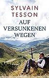 Auf versunkenen Wegen - Sylvain Tesson