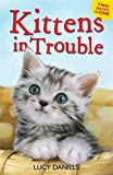 Kittens in Trouble (Kittens in the Kitchen & Kitten in the Cold) (Animal Ark)