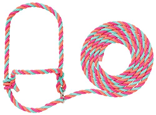 Weaver Leder Vieh 35-7910-h37STIERWALT Breaking Halfter, Hot Pink/Rosa/Coral/Mint (Hot Leder-neckholder Leathers)