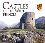 Castles of the Welsh Princes by Paul R Davis (2007-06-18)