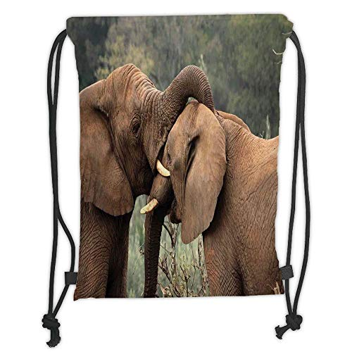 GONIESA Drawstring Sack Backpacks Bags,Safari Decor,Two Wild Savanna Elephants Wrestling Cute Nature Icons South African Animals Game Photo,Brown Green Soft Satin,5 Liter Capacity,Adjustable St