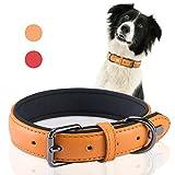 PETBABA Hundehalsbänder Leder, 3cm Breit Weich Gepolstert Verstellbar Hunde Halsbänder in Orange
