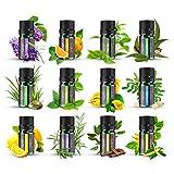 Ätherische Öle Set ANJOU Aromatherapie Duftöl ätherisches Öl 12 x 5ml für Aroma diffuser 100%...