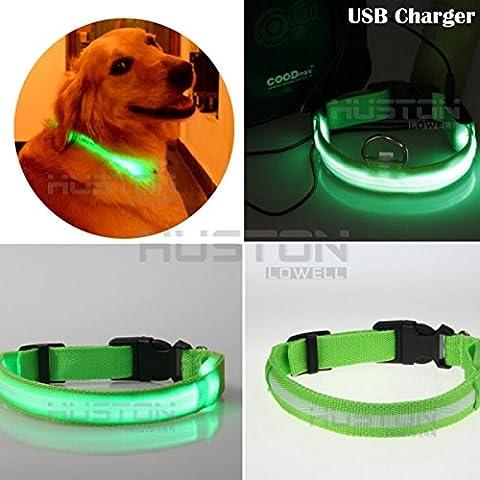 Auction House - USB Collar del Perro LED Recargable - Mejora deL Perro Visibilidad y Seguridad - 7 Colores y 4 Tamaños - LED Ultrabrillante Resplandor y - Se Conecta a Dispositivos de Recargar - No Necesita Pilas - Gran Diversión y Mejora la Visibilidad y la Seguridad del Perro(VERDE) (L:43CM-60CM, VERDE)