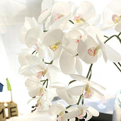 Longra Wohnaccessoires & Deko Kunstblumen & -pflanzen Künstliche Seide Fake Blumen Phalaenopsis Hochzeit Bouquet Party Home Decor Blumen (White)